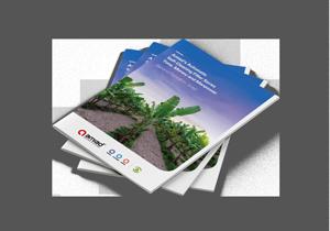 A4_Brochure_Mockup_Bannana.png